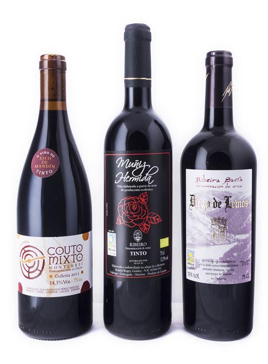 Seleccion 3 botellas Xaneiro 2014 club Vide, Vide!
