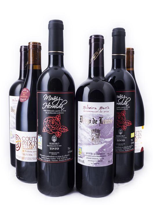 Seleccion 6 botellas Xaneiro 2014 club Vide, Vide!